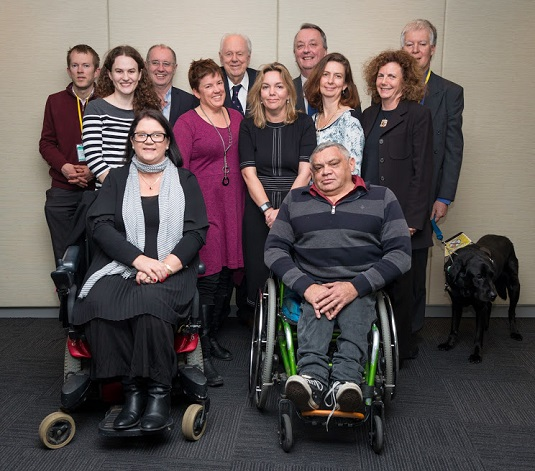 ndis priving review full document